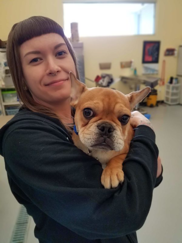 There are always cute puppies and kittens in our spay and neuter suite.