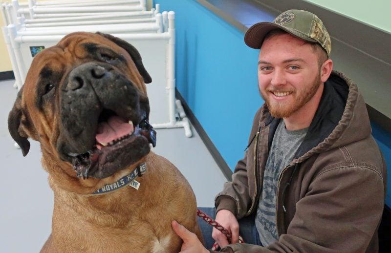 A man and his dog look at the camera