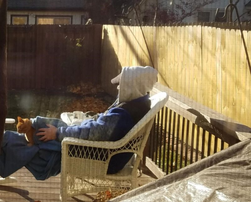 A man and an organge cat sit in a deck chair