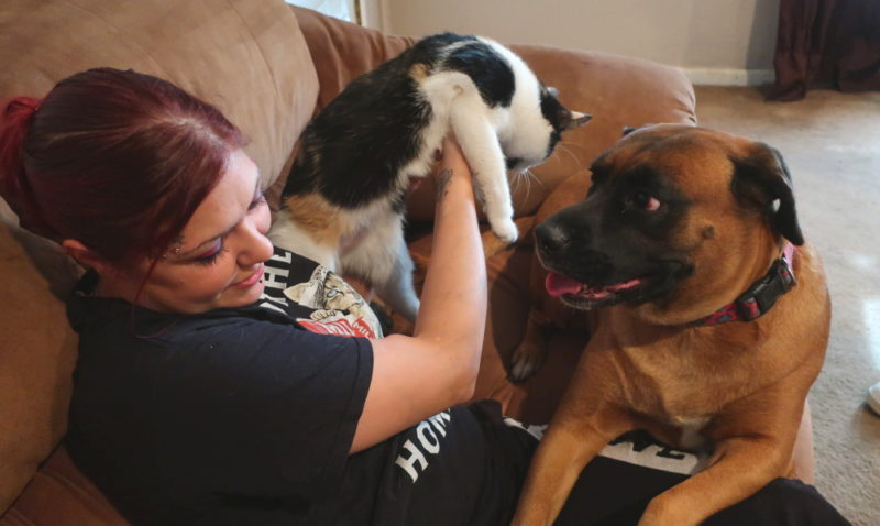 People and pets belong together. And Spay and Neuter Kansas City works tirelessly to make sure they can stay together.