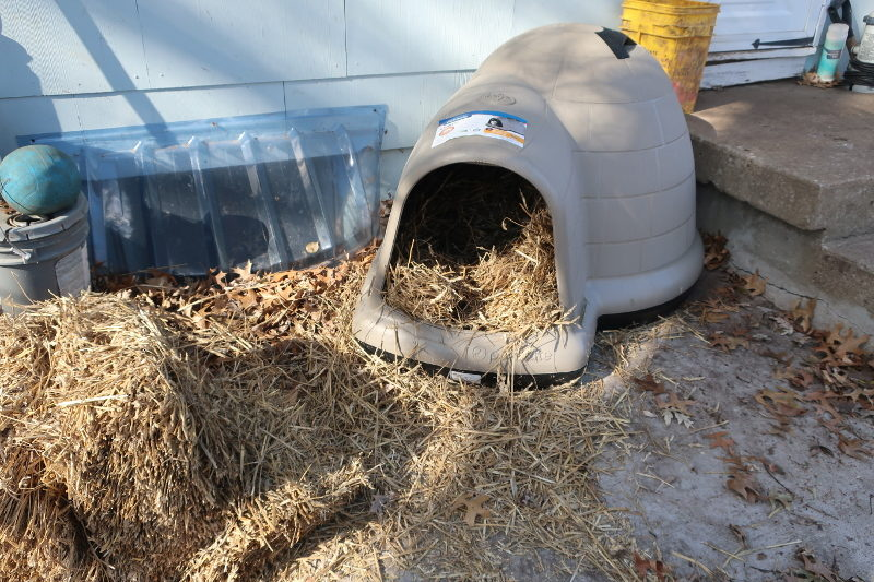 Dog houses and straw and can save lives.