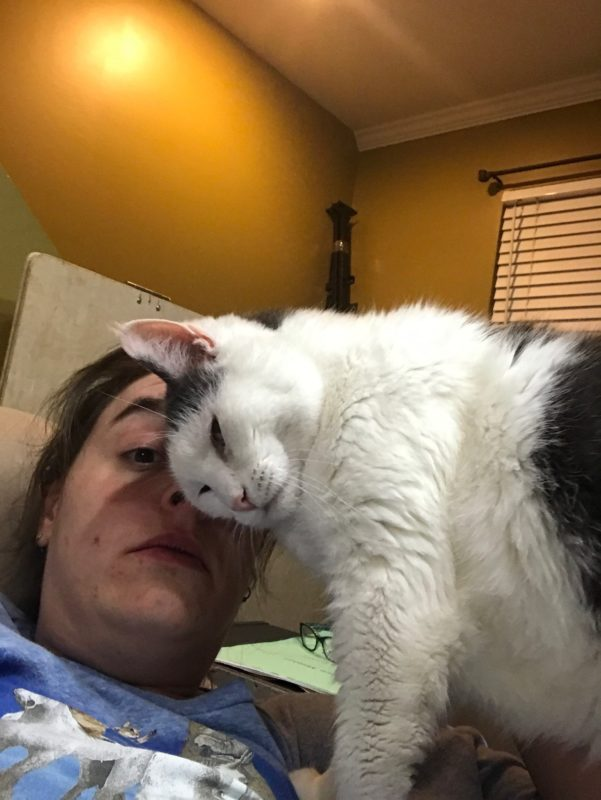 a woman's face is partially blocked by a black and white cat rubbing its face on hers