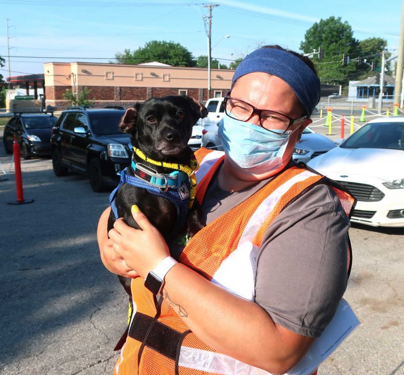 A woman wearing an orange vest holds a dog