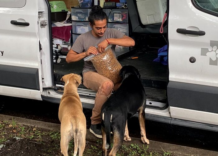 Helping pet owners with their dogs and cats is our mission