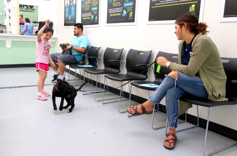 A girl holds her hand in the air, trying to get a dog to look. A woman sits in a chair nearby, holding the leash.