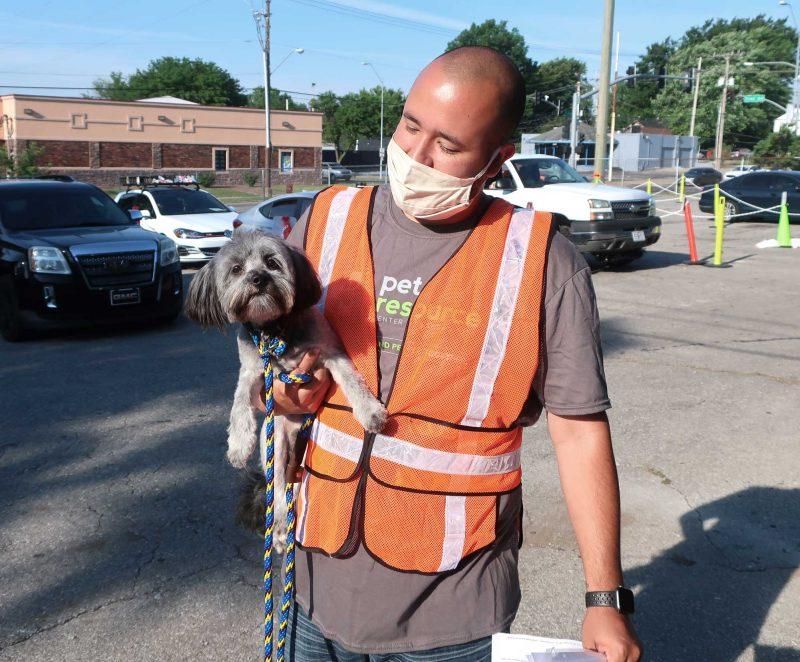 A man in a safety vest holds a dog