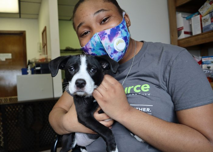 high school intern cuddling black and white pit bull mix puppy