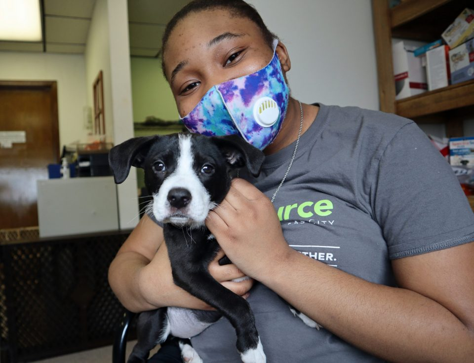 high school intern cuddling black and white pit bull mix puppy