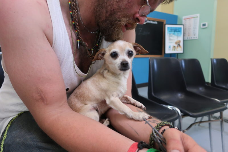 Leroy the Chihuahua can be credited with saving John's life.
