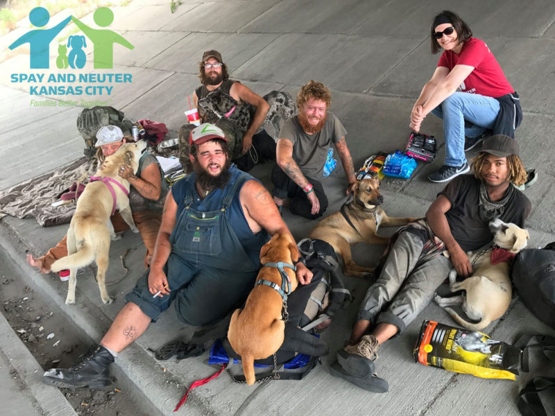 The homeless care for their animals well, often forgoing food or other support for themselves so they can give it to their pets.