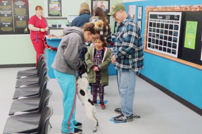 Liz meets a black and white dog named Bubba while his family looks on.