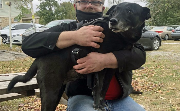 Service dog on man's lap at picnic tables