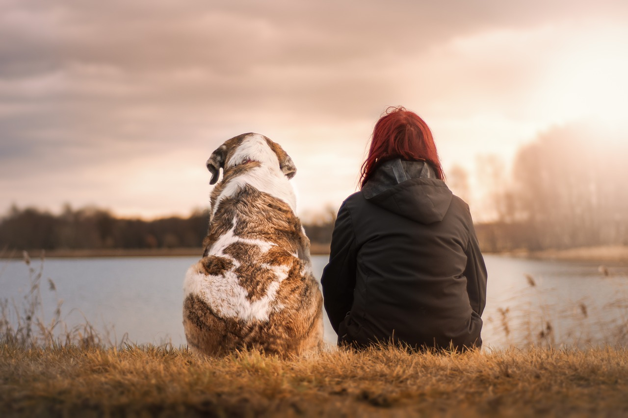 A woman and a dog watch a sunset.