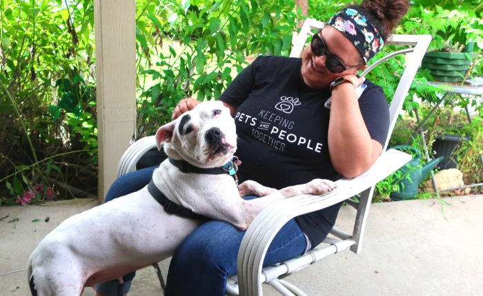 A dog rests the front half of her body on the lap of a woman.