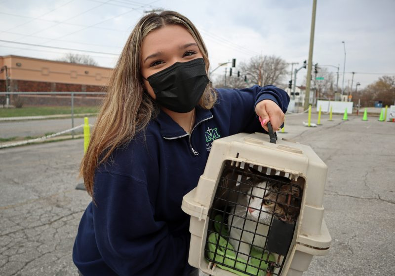 high school intern carrying cat inside for surgery