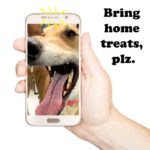A hand is holding a cell phone with a dog's face on it.